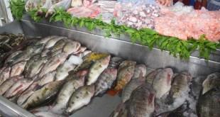 Por cuaresma, emite Copriseh recomendaciones para consumo de pescado