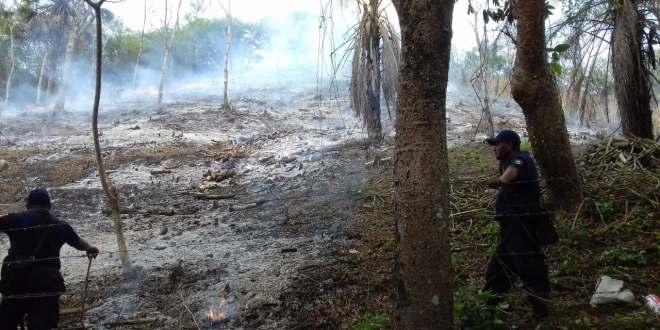 Se registraron tres incendios en 24 horas en la Huasteca