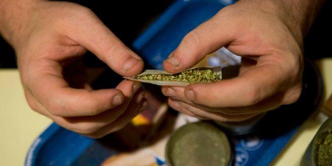Realizan foro en la UAEH sobre uso medicinal de cannabis