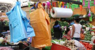 """Es """"letra muerta"""" la ley que prohíbe uso de plásticos y unicel en Hidalgo"""