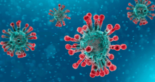 coronavirus/Covid-19/México