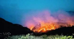 Evacúan a mil 400 personas por incendio en Sierra Gorda de Hidalgo