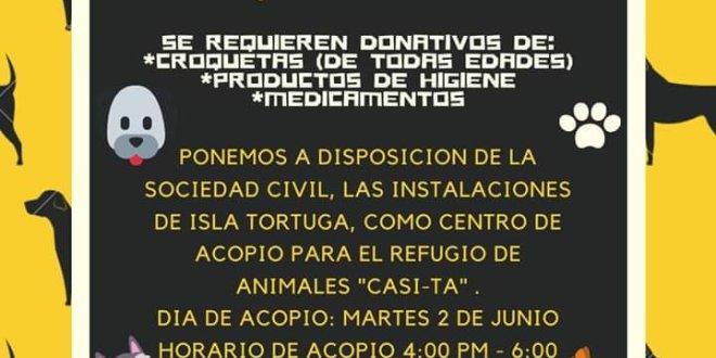 Piden donativo para refugio de animales Casi-Ta