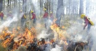 Registra Hidalgo 60 incendios forestales; afectan mil 744 hectáreas