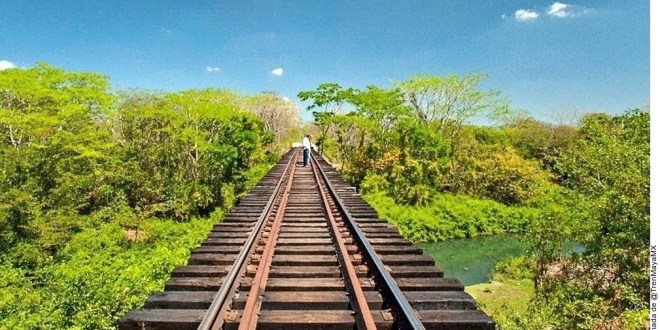 Reprueban estudio ambiental del Tren Maya
