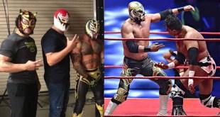 ¿Cuánto ganan los luchadores en México y Estados Unidos?