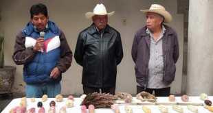 Cancela comité festival maíz Tezontepec