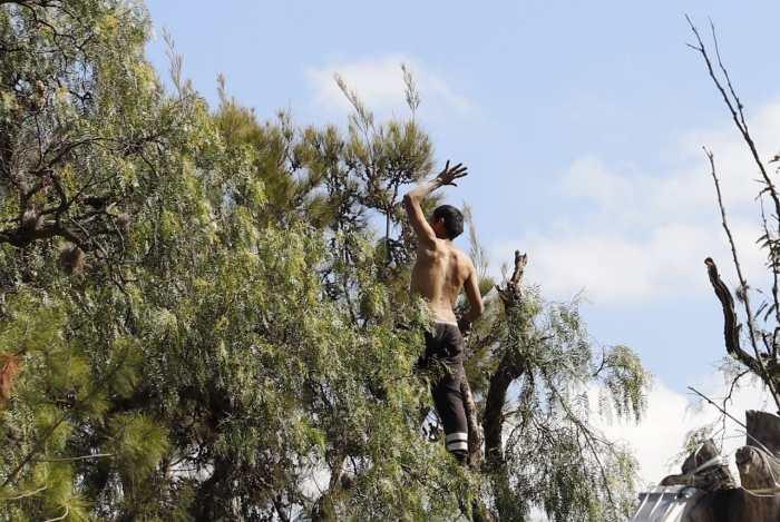 Hombre amenaza con arrojarse desde Árbol del Niño, en Parque Hidalgo