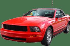 Auto body paint & repair