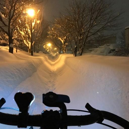 新雪時の歩道