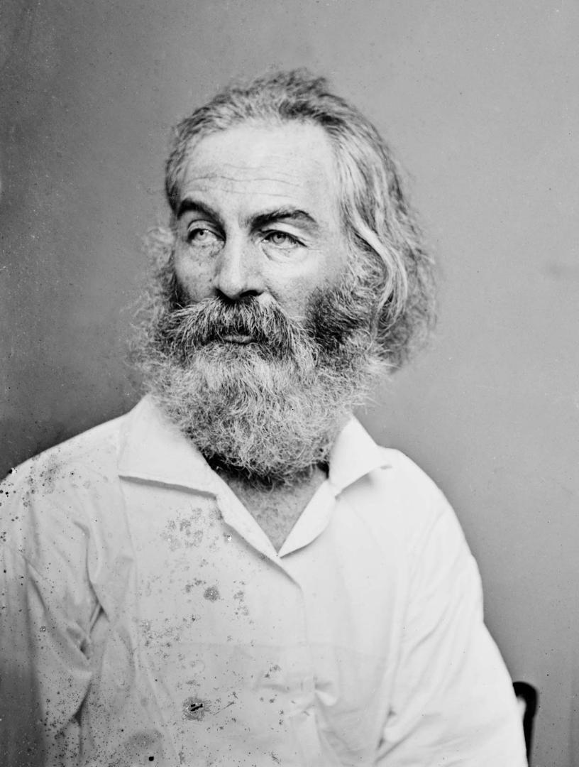 Walt Whitman, by Matthew Brady