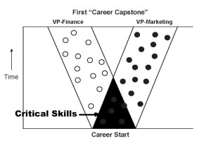 1_Critical_Skills