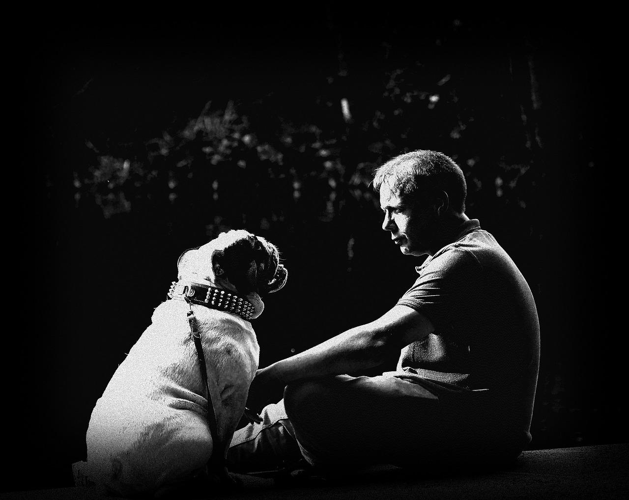 animal pet dog communication bulldog friendship Critter Caretakers Pet Services What Is Animal Communication?
