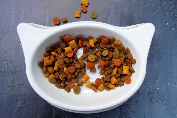 cat food bowl Critter Caretakers Pet Services Top 10 Worst Dry Cat Foods