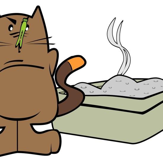 cat litter tray cartoon Critter Caretakers Pet Services Chandler Pet Sitters Discuss Cat Nip