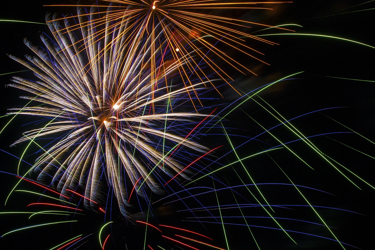 fireworks 4th july Critter Caretakers Pet Services The Importance of a Professional Pet Sitter Over the 4th of July