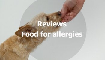 Top 10 Best Dog Food For Sensitive Stomach And Diarrhea Updated 2019