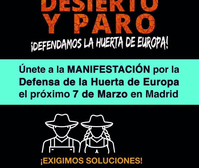 MANIFESTACION  EN  MADRID  EL  DIA  7  DE  MARZO  2.018