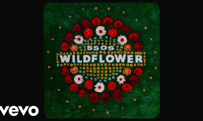 5sos wildflower