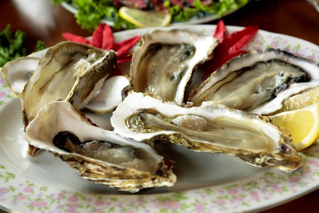 Oysters, Visit Croatia