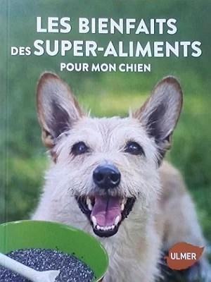 les bienfaits des super aliments pour le chien