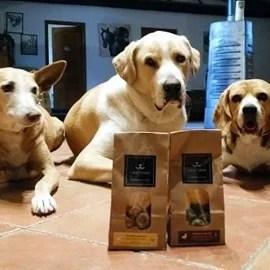 chiens-biscuits-naturels-crocandiz