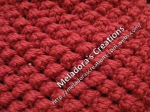 crochet raspberry stitch hat beanie