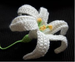 cro easter lily 0614