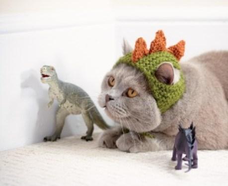 dinosaurcata