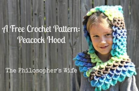 Free Pattern Peacock Hoodie