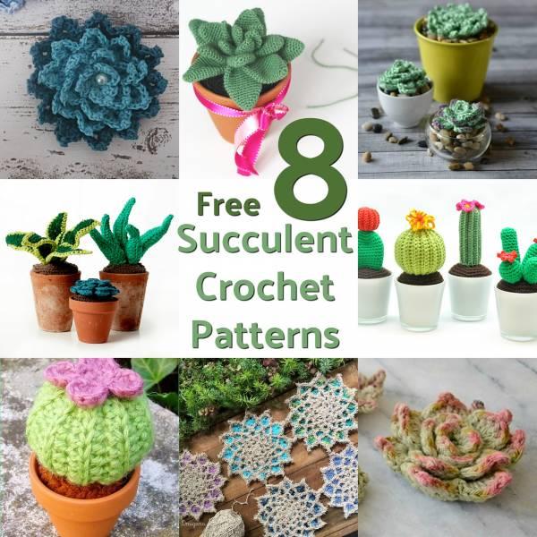 8 Free Succulent Crochet Patterns