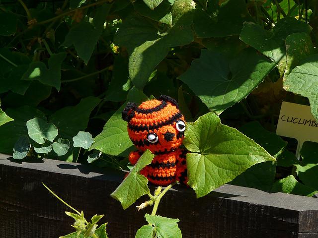 crochetbug, crochet tiger, amigurumi tiger, crochet toy, diy toy, washington dc, fourth of july. vegetable garden