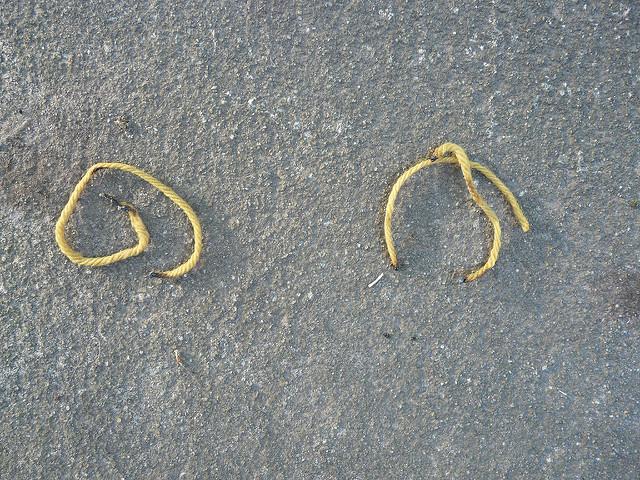 singed yarn strands