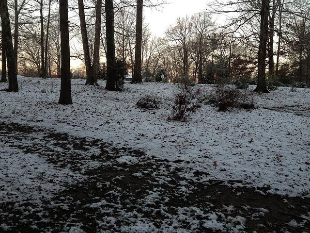 January 2013 snow day