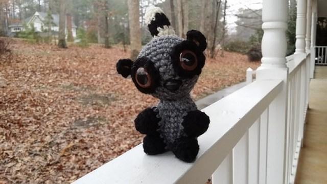 New eyes for Coltrane the crochet lemur