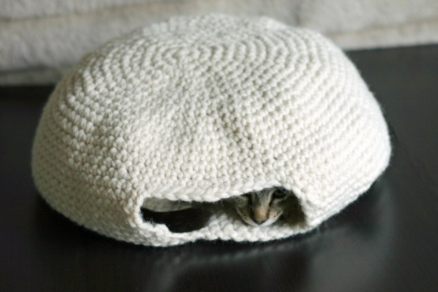 Crochet Cat Bed Pattern Free The Dapper Toad An Oven For My Muffin