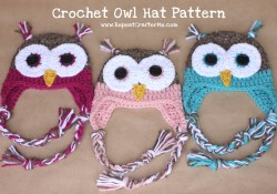 Repeat Crafter Me Crochet Owl Hat Pattern Crochet Owl Hat Pattern Repeat Crafter Me