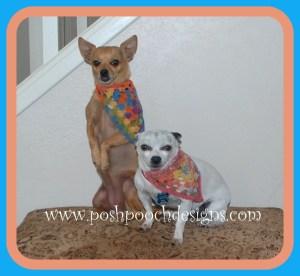 Pennant Dog Bandanna ~ Sara Sach - Posh Pooch Designs