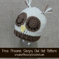 Preemie Sleepy Owl Hat ~ Cream Of The Crop Crochet