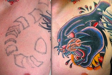 Panther head cover up. Chest. 2013