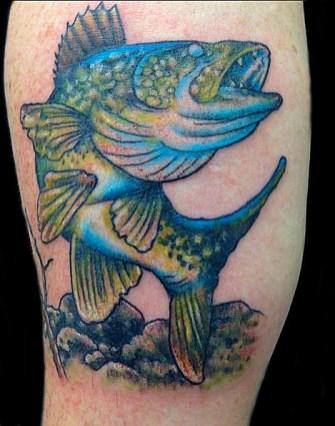 Walleye fish tattoo, inside forearm. 2016