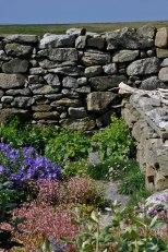 Garden-Vista-copy