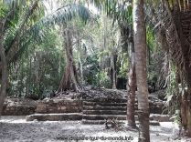 Escale à Costa Maya – Mahahual au Mexique