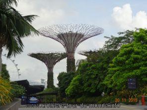 Croisière tour du monde Escale à Singapour Gardens by the Bay