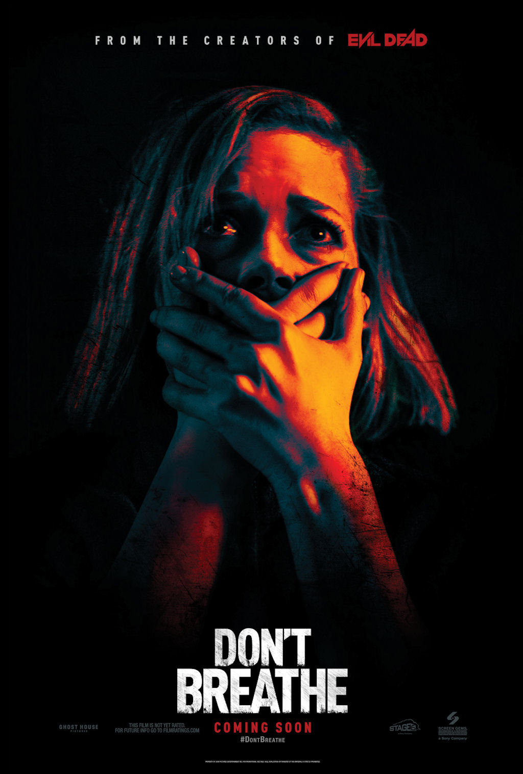 Image result for dont breathe movie poster