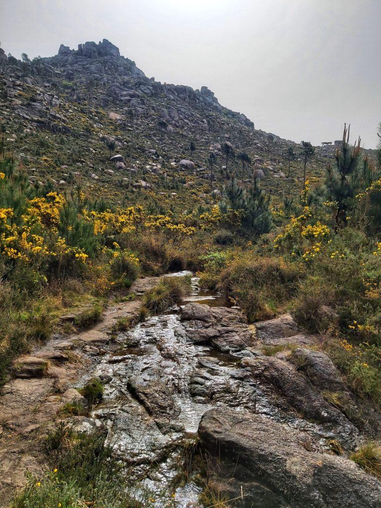 Riachuelo en ruta al Monte Pindo
