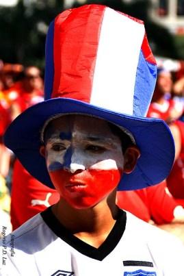 Copa Mundo Fan Fest ChilexHolanda (24)
