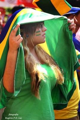 Copa Mundo Fan Fest ChilexHolanda (49)