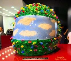Salão Automoveis 2014 homenagem Ayrton Senna capacete Fernanda Takai (08)