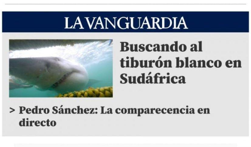 Entrevista Tiburón Blanco en Sudáfrica